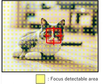 Oppo Find X2的传感器规格泄漏将输出48 MP图像