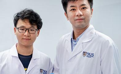 国大研究人员为柔性折纸机器人创造了一种新材料