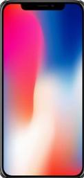 分享iPhoneX关闭屏幕缩放功能的方法