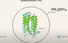 观看有关AI系统的视频 该系统可以预测蛋白质如何折叠