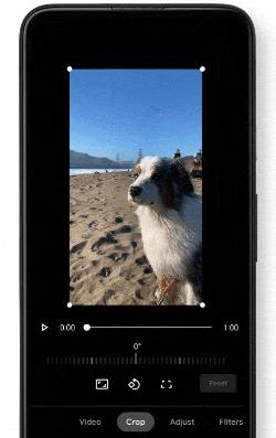 谷歌相簿的应用程式内影片编辑器最新更新提供更多选择