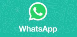 如何在新电话号码上转移WhatsApp聊天和帐户
