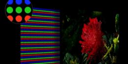 三星为消费者讨论新型MicroLED电视在明亮和黑暗的场景中提供出色的细节